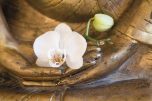 Buddha_Blume