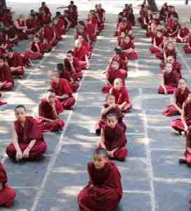 Children Monks in the 25years colaboration Pneuma Institute Gaden Shartse
