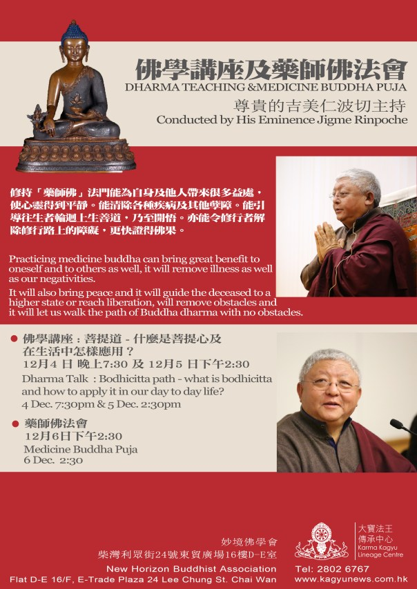 jigme rinpoche poster 2d
