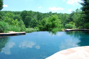 Swimming Pool design in Clarksville, Ellicott City, Glenwood, Glenelg, Cooksville, Fulton, Olney & Brookville