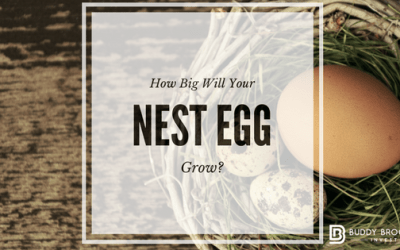 How Much Will Your Nest Egg Grow?