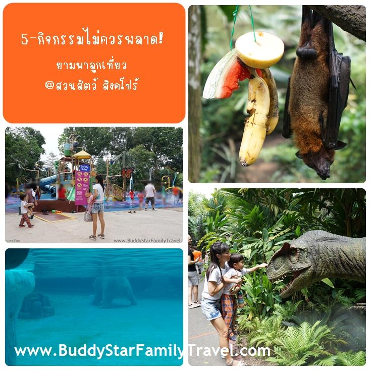 สวนสัตว์สิงคโปร์,ที่เที่ยว,เด็ก,สิงคโปร์,พาลูกเที่ยวสิงคโปร์,