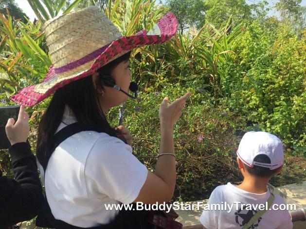 สวนสมุนไพร,มหิดล,ที่เที่ยว,เด็ก,กิจกรรม,พาลูกเที่ยว,รีวิว, สวนสิรีรุกขชาติ