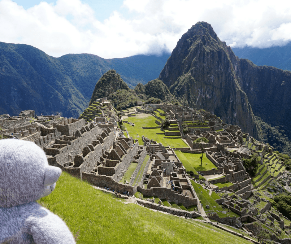Buddy The Traveling Monkey Llamas of Machu Picchu