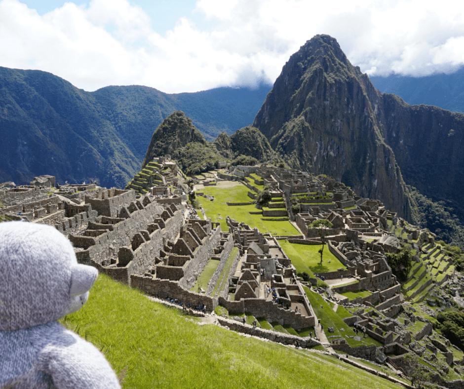 Buddy The Traveling Monkey Llamas of Machu Picchu