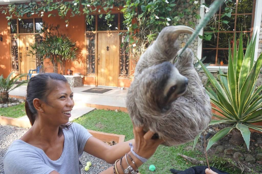 Memorable Animal Encounters