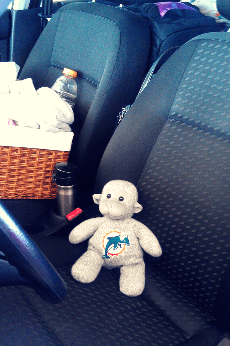 Buddy The Traveling Monkey Ode To Betsy