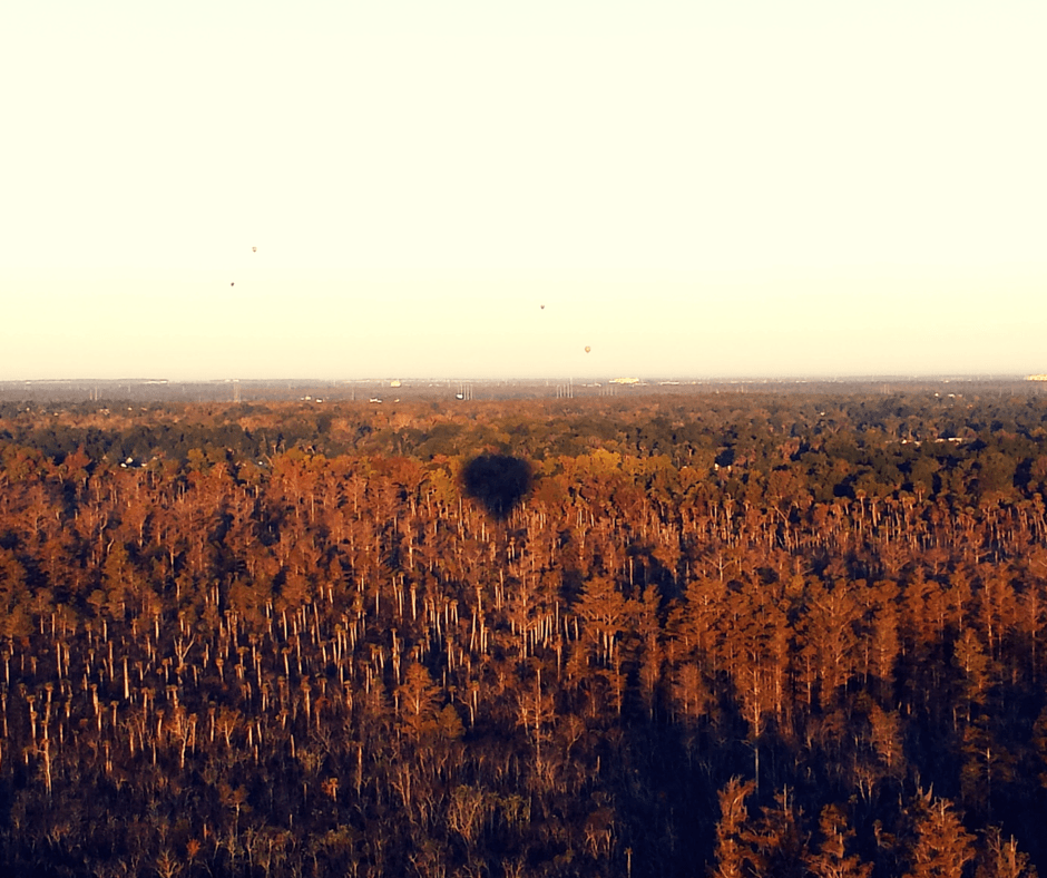 Hot Air Balloon Ride In Central Florida