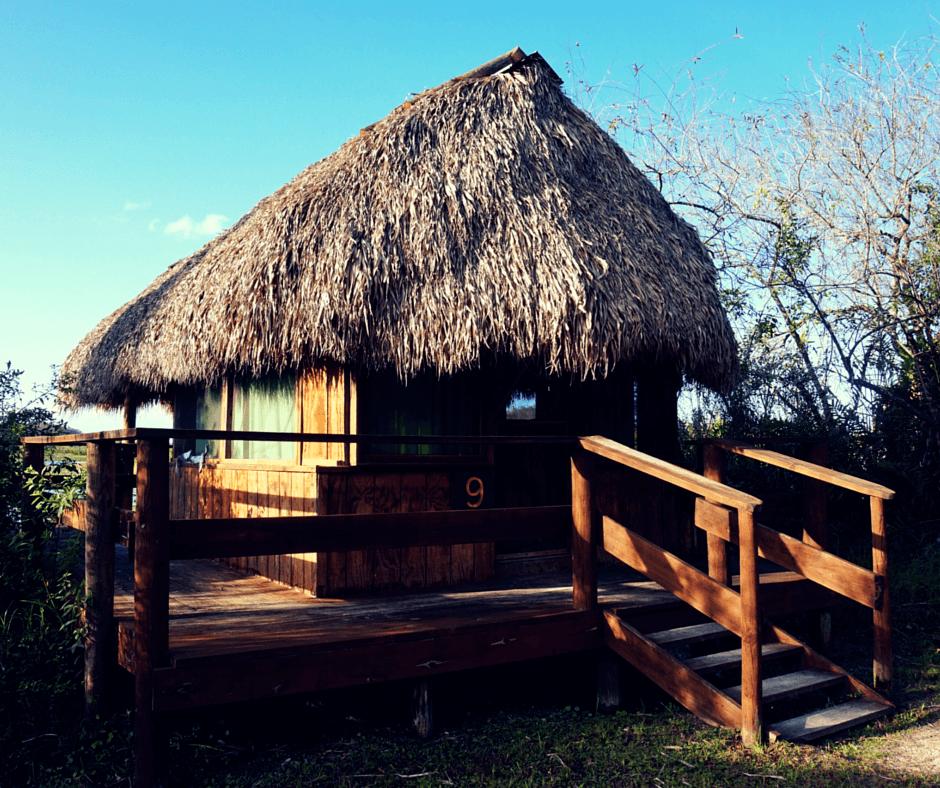 Billie Swamp Safari chickee hut
