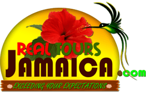 Real Tours Jamaica Logo