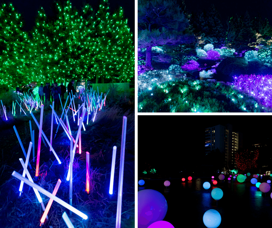 Light Sabers, Globes, And Colorful Lights Inside The Denver Botanic Gardens