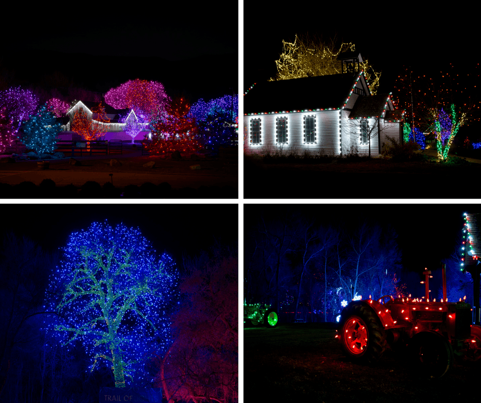 A tree filled with Christmas lights, a tractor with lights, lit up farm at Chatfield Farms