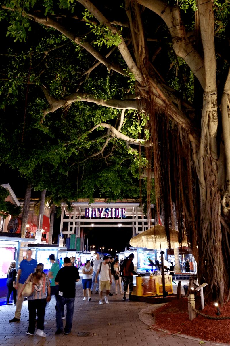 People walking in Bayside on Biscayne Boulevard