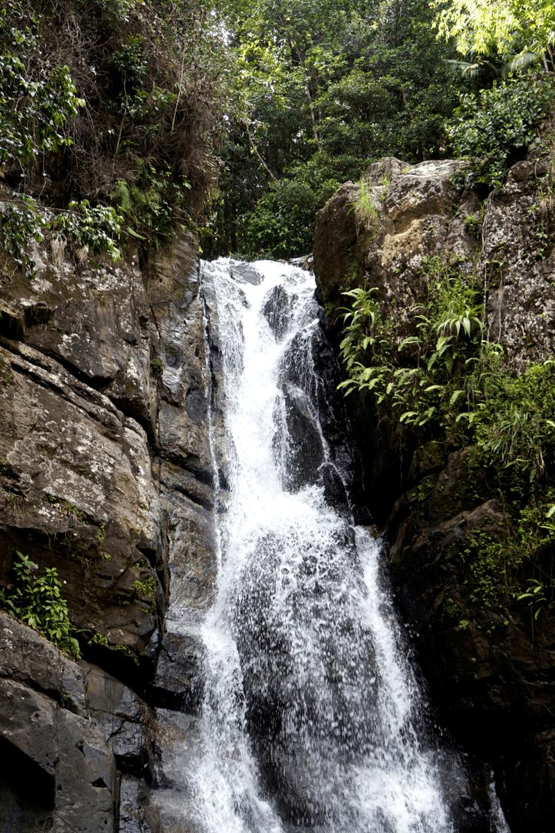 La Mina waterfall in el yunque