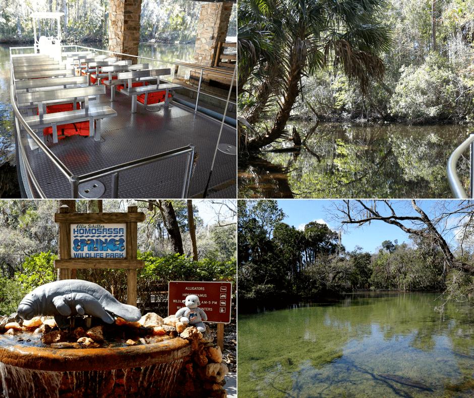 boat and springs in homosassa springs wildlife park