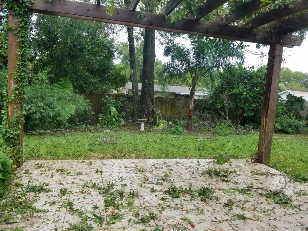 Back yard debris after Hurricane Irma