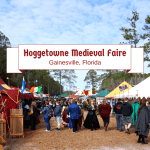 Hoggetowne Medieval Faire In Gainesville, Florida