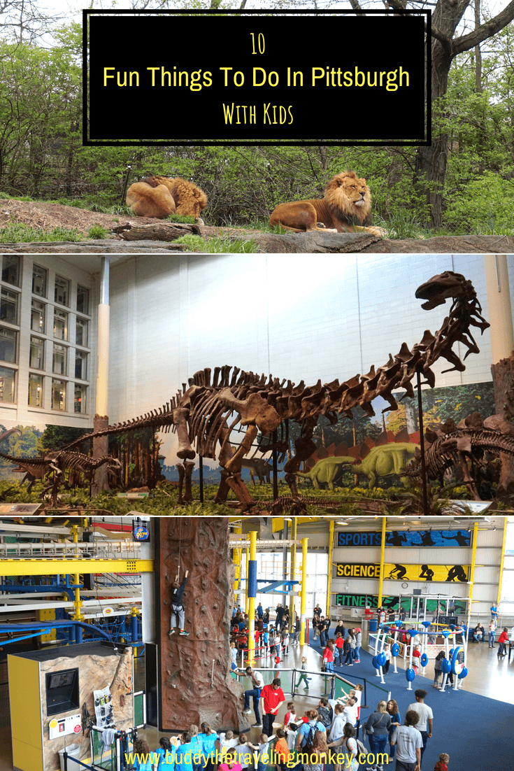 Our suggestions for top 10 fun things to do in Pittsburgh with kids. From sloth encounters to rock climbing, Pittsburgh has it all!