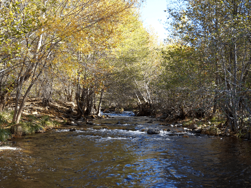 The Oak Creek trail is one of the best hikes in Sedona
