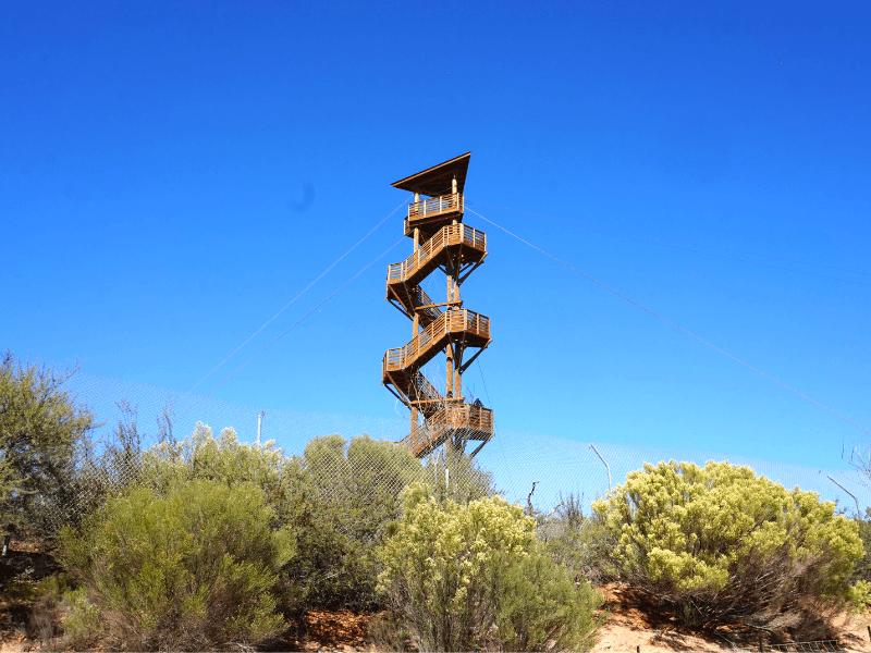 Zipline at Arizona Wildlife Park Out of Africa