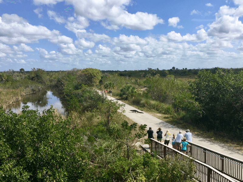 Ten Thousand Islands National Wildlife Refuge provides some of the best hiking in Florida
