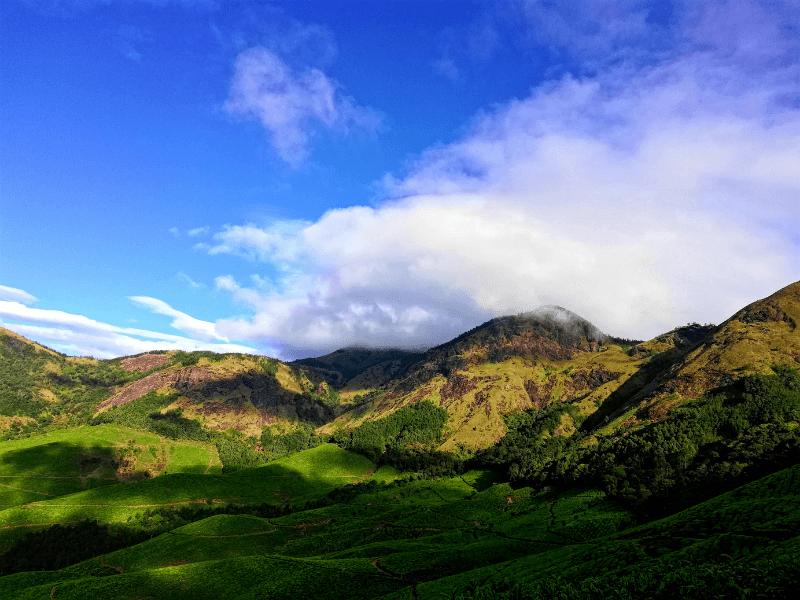 Beautiful green Kerala