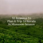 10 Reasons To Plan A Trip To Kerala In Monsoon Season