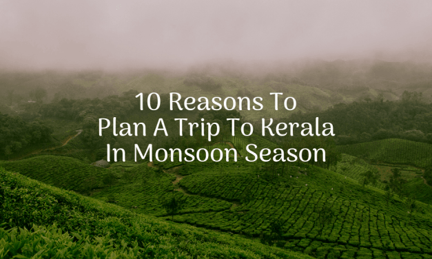 10 Reasons To Plan A Trip To Kerala In Monsoon Season