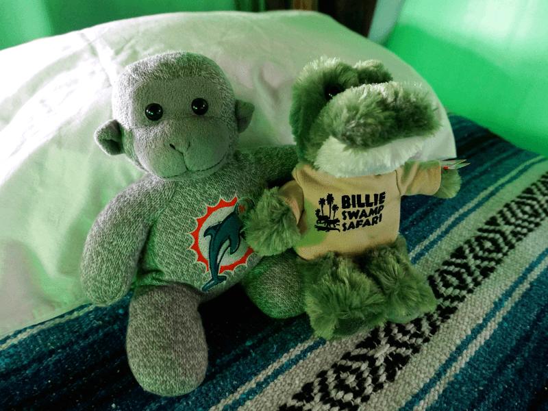 We made a new friend at Billie Swamp Safari
