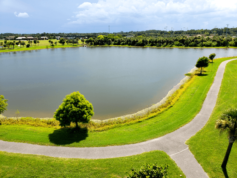 View of Chain of Lakes Park from the observation tower