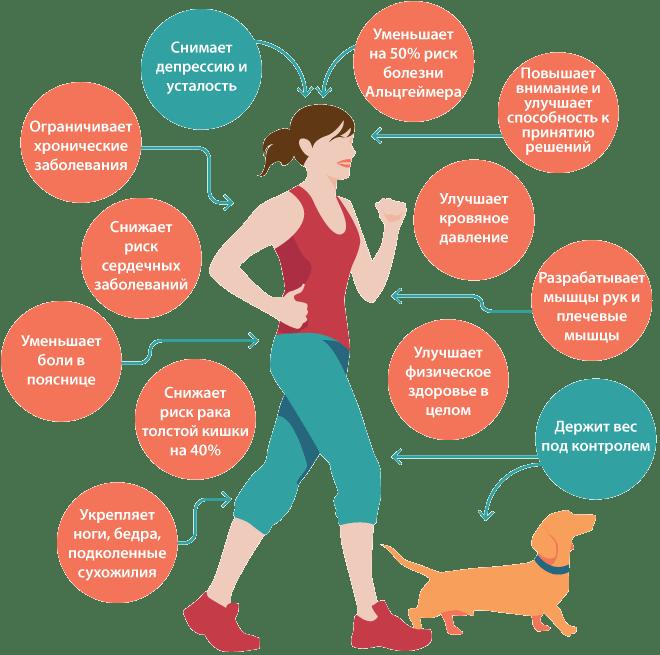 Научно доказанная польза пеших прогулок