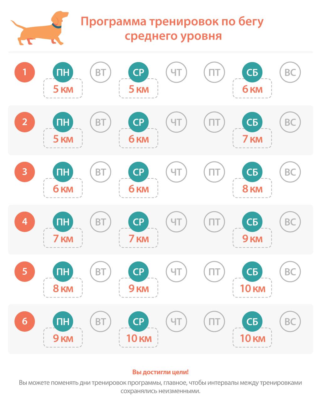 Программа тренировок по бегу на 6 недель, средний уровень
