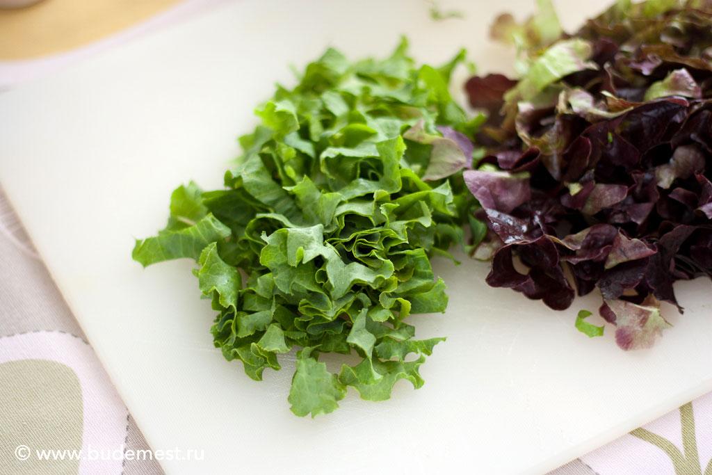 Салат ботавия и дуболистный салат