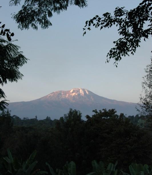 Kilimanjaro Climbing Rongai Route 7 Days