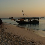 14 Day Holiday in Serengeti to Zanzibar