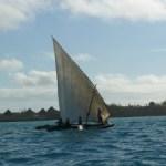Safari to Zanzibar Package Holiday 6 Days