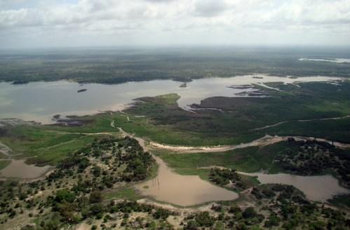 Selous Game Reserve Tanzania