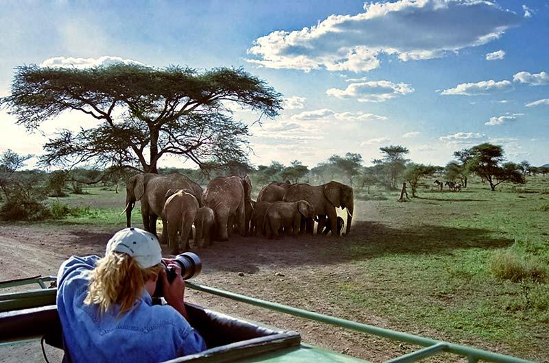 2 Day Safari Tarangire  Ngorongoro Crater