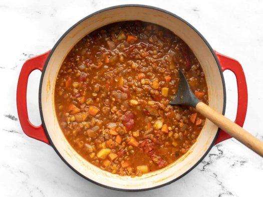 Finished tomato lentil soup