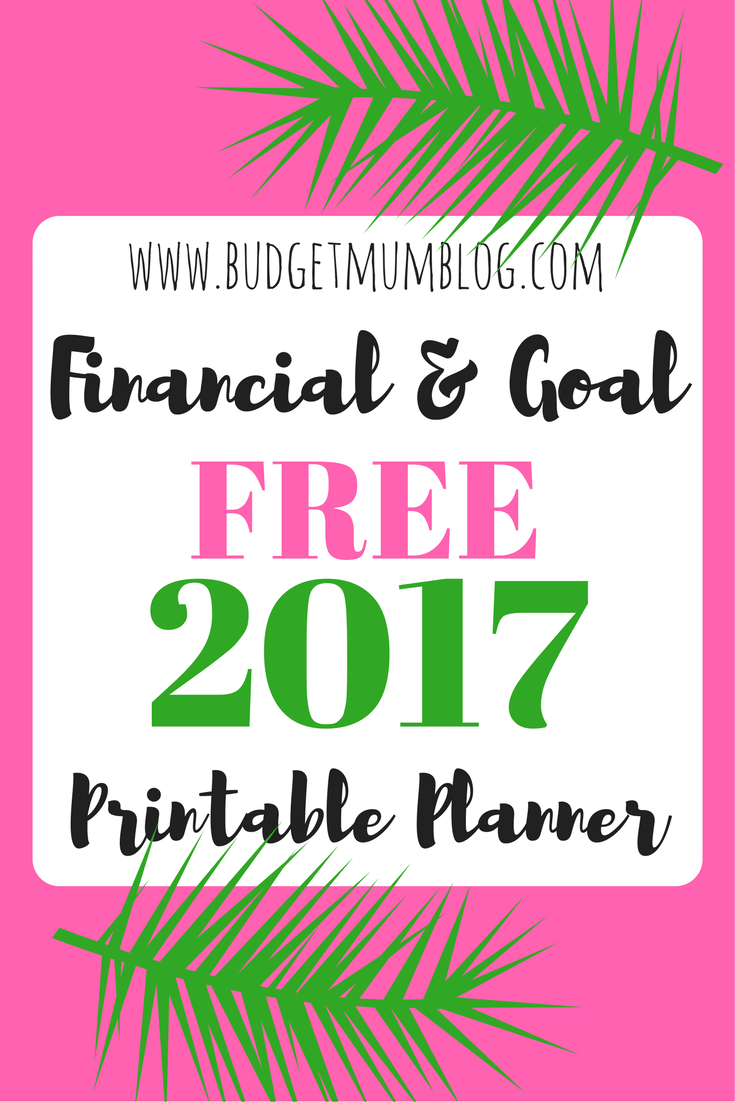 Free financial and goal planner for 2017