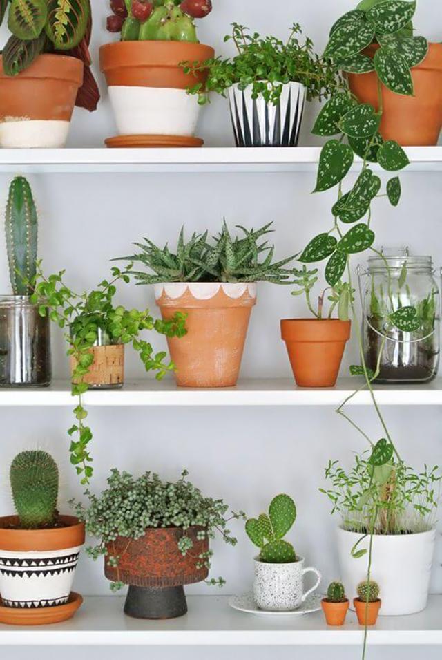potten met prints - tuin opknappen