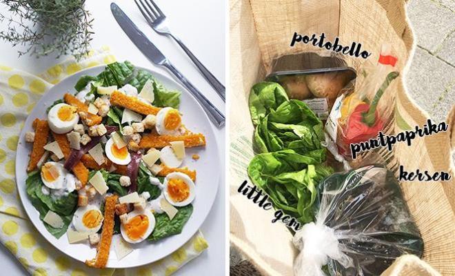 groente en fruit verse oogst