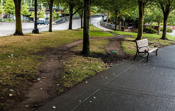desire paths