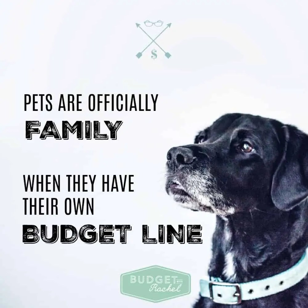 How to Add a Pet to Your Budget:  When Fido Becomes Family. Once I got my budget set up, adding my dog wasn't that difficult. BUT, I was missing 2 out of 3 things I should be budgeting for! Now I will be prepared for everything my dog will need!! So glad I found these tips!