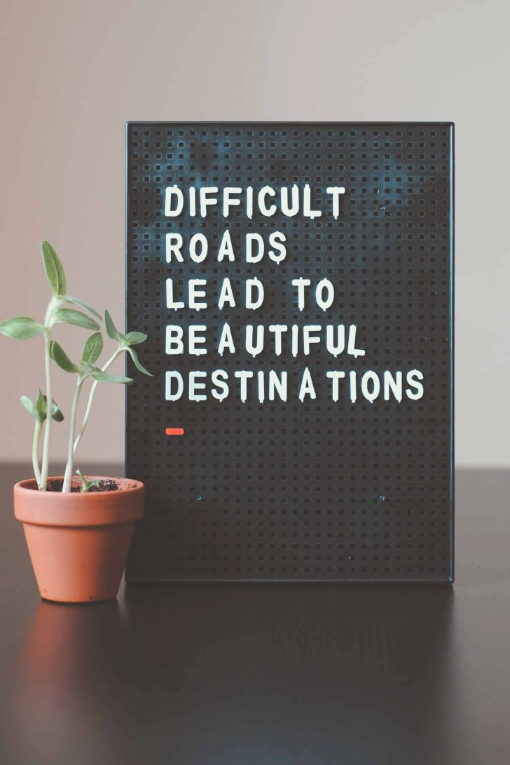 plant next to sign reading difficult roads lead to beautiful destinations
