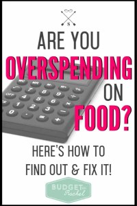 If you are spending too much money on food, you are not alone! Use this simple equation to where you need to improve with your grocery budget. Plus learn these simple money saving tips to cut your grocery budget! Tips and tricks to stop spending so much money on food will be a game changer! #groceries #foodbudget #groceryshopping #moneysavingtips #savemoney