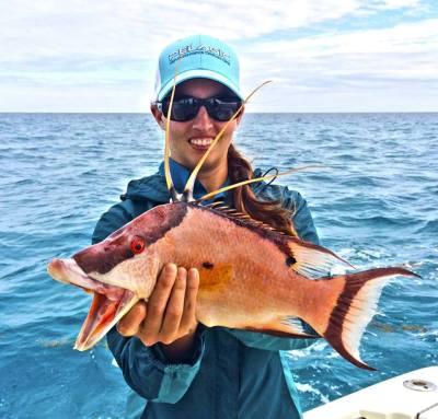 13015snook Early February Islamorada Fishing Report 2015