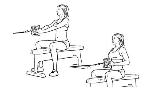 Упражнения для укрепления и развития мышц спины