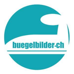 cropped-buegelbilder_ch.jpg