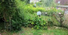 Impressionen Garten